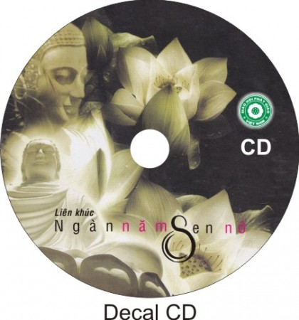 Nhãn CD/DVD